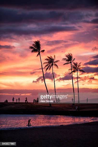sunset - ホノルル ストックフォトと画像