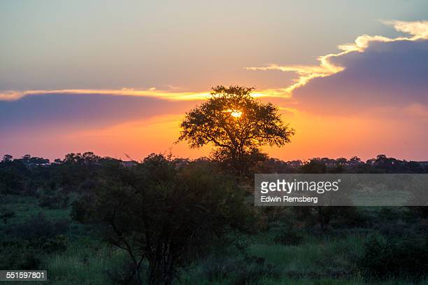 sunset - mpumalanga province stock pictures, royalty-free photos & images