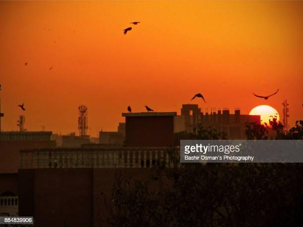 sunset - カラチ ストックフォトと画像