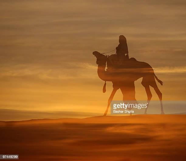 sunset - touareg photos et images de collection
