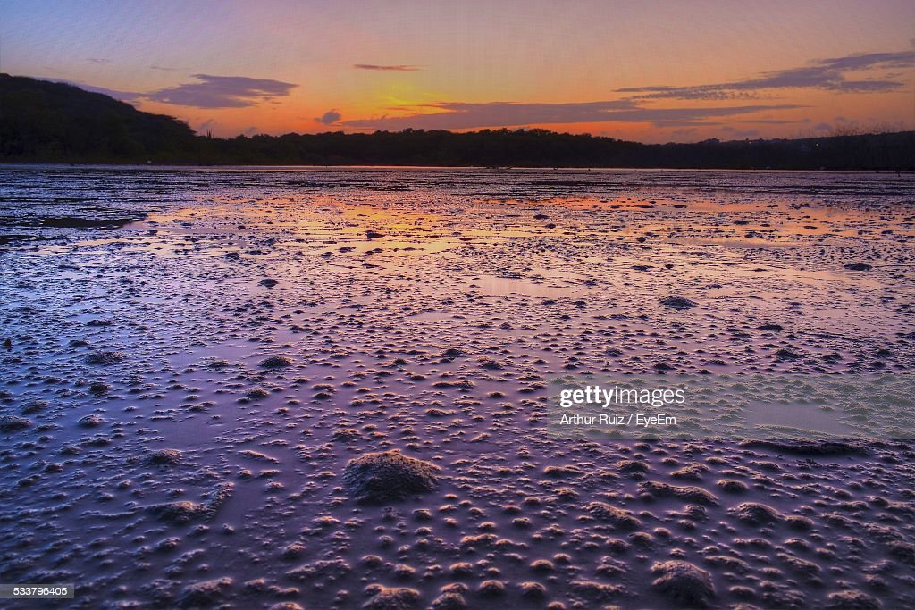 Sunset Reflecting In Mud At Wetland : Foto stock