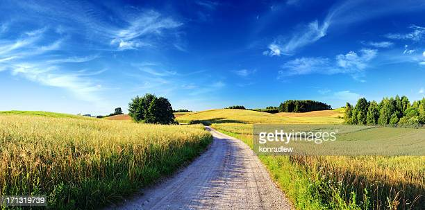 Sunset Rolling Landscape - Dirt Road, Meadows and Wheat Fields