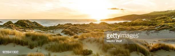 Sunset, sand dunes, Sandfly Bay, Dunedin, Otago, Otago Peninsula, Southland, New Zealand