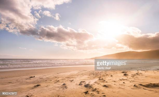 Sunset, Sandfly Bay, Dunedin, Otago Peninsula, Southland, New Zealand