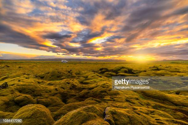 sunset scene of moss covered lava fields in south iceland - softness stock pictures, royalty-free photos & images