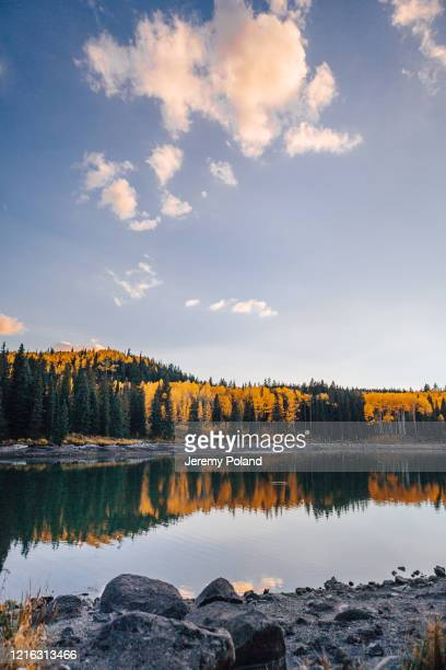 sunset shot of a lake in the fall autumn colors in the grand mesa national forest in beautiful western colorado - reflection lake stock pictures, royalty-free photos & images