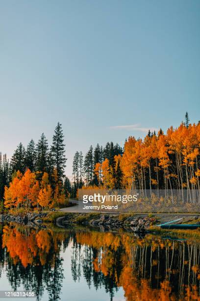 sunset shot of a reflective lake in the fall autumn colors in the grand mesa national forest in beautiful western colorado - reflection lake stock pictures, royalty-free photos & images