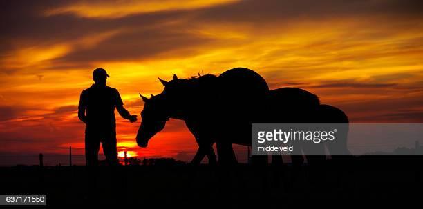 Sonnenuntergang silhouette im Land