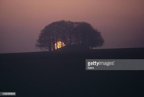 A sunset sillhouettes trees on the Avebury landscape Wiltshire May 1970 Avebury is the site of an ancient monument containing a large henge and...