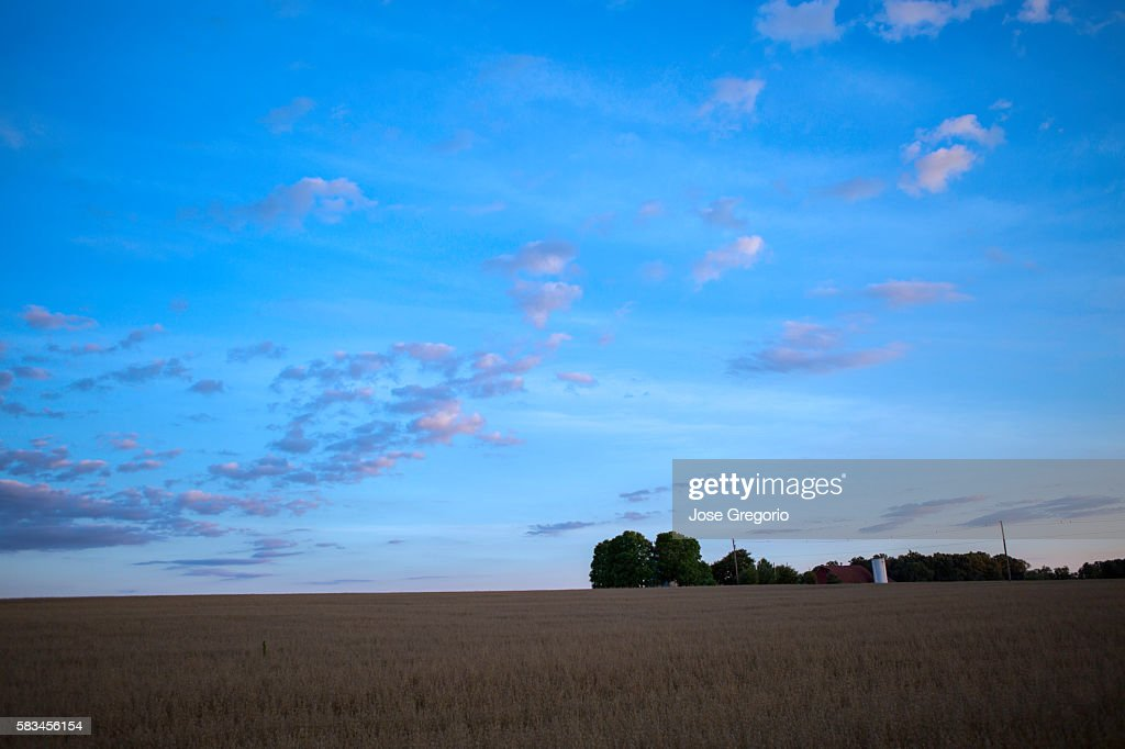 Sunset skies over farm field during summer. : Stock Photo