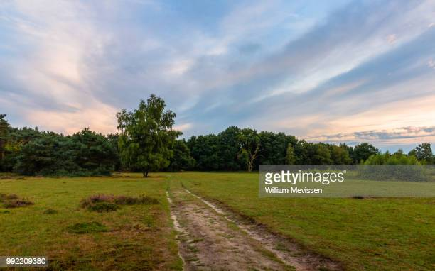 sunset sky - william mevissen stock photos and pictures