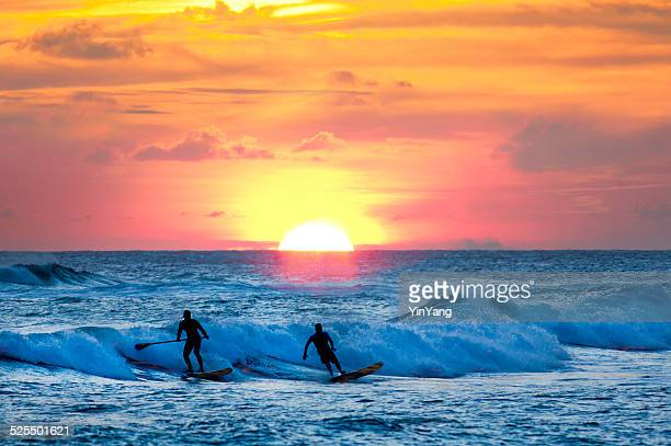 sunset surfer and paddle board on pacific waves, kauai, hawaii - kauai stock photos and pictures