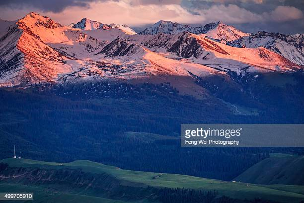sunset @ tian shan mountains, xinjiang china - tien shan mountains stock pictures, royalty-free photos & images