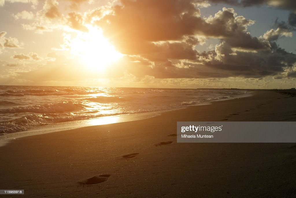 Sunset view and footprints in sand : Stock Photo