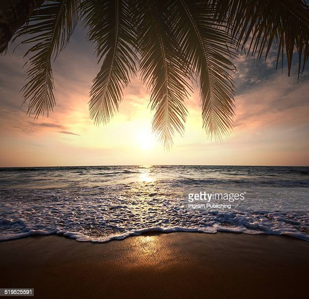 Sunset view at tropical beach