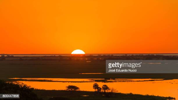 sunset view from pantanal - silhueta stock photos and pictures