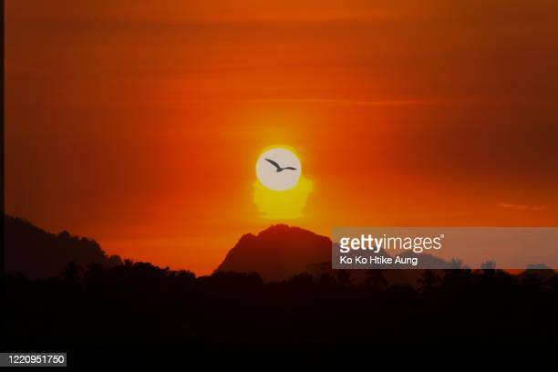 sunset view - ko ko htike aung stock pictures, royalty-free photos & images
