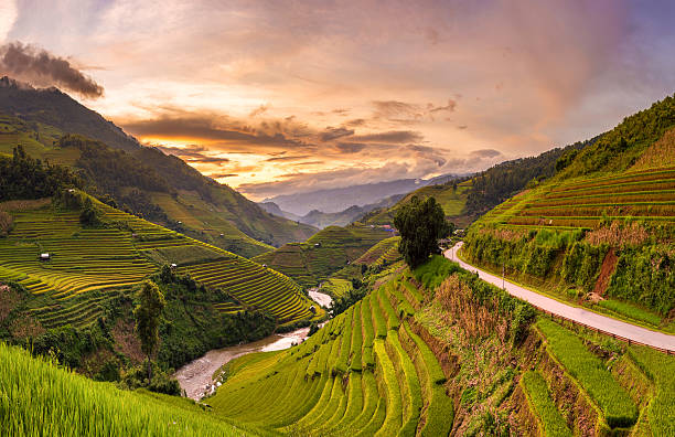Sunset View Point Of Rice Terrace Wall Art
