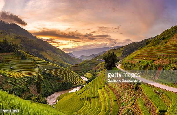 sunset view point of rice terrace - vietnam imagens e fotografias de stock