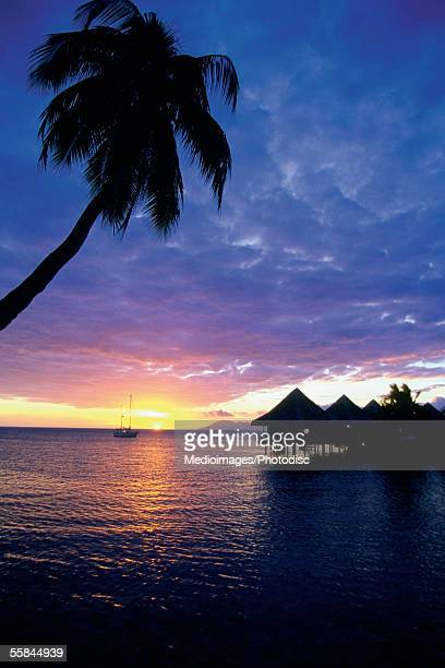 Sunset viewed from beach, Tahiti, French Polynesia