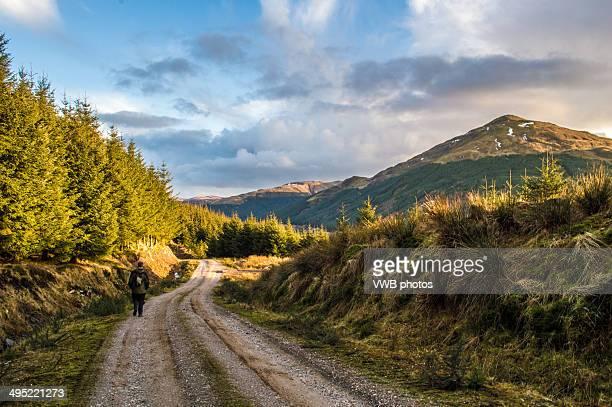 sunset  views, cowal peninsula, argyll - peninsula stock pictures, royalty-free photos & images