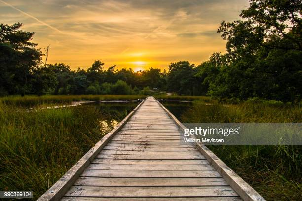 sunset walkway - william mevissen stock pictures, royalty-free photos & images