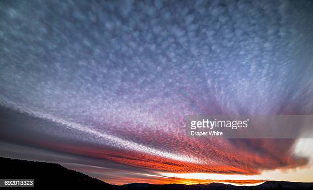 sunset with altocumulus stratiformis undulatus. - altocumulus stockfoto's en -beelden
