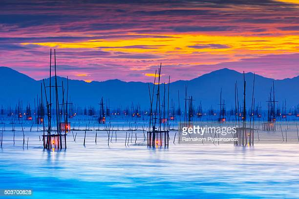 sunset with magical bamboo fish trap in songkhla lake, songkhla, thailand. - provincia di songkhla foto e immagini stock