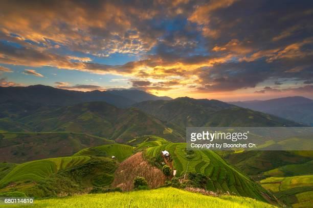 Sunset with rice terraced of Mu Cang Chai, YenBai, Vietnam