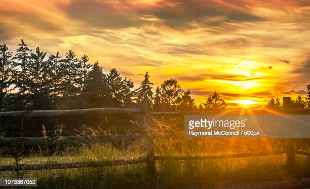 sunset1 near morristown nj - mcconnell stock pictures, royalty-free photos & images