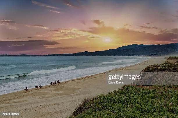 Sunsets on horseback riders enjoying, wildflowers and ocean views.