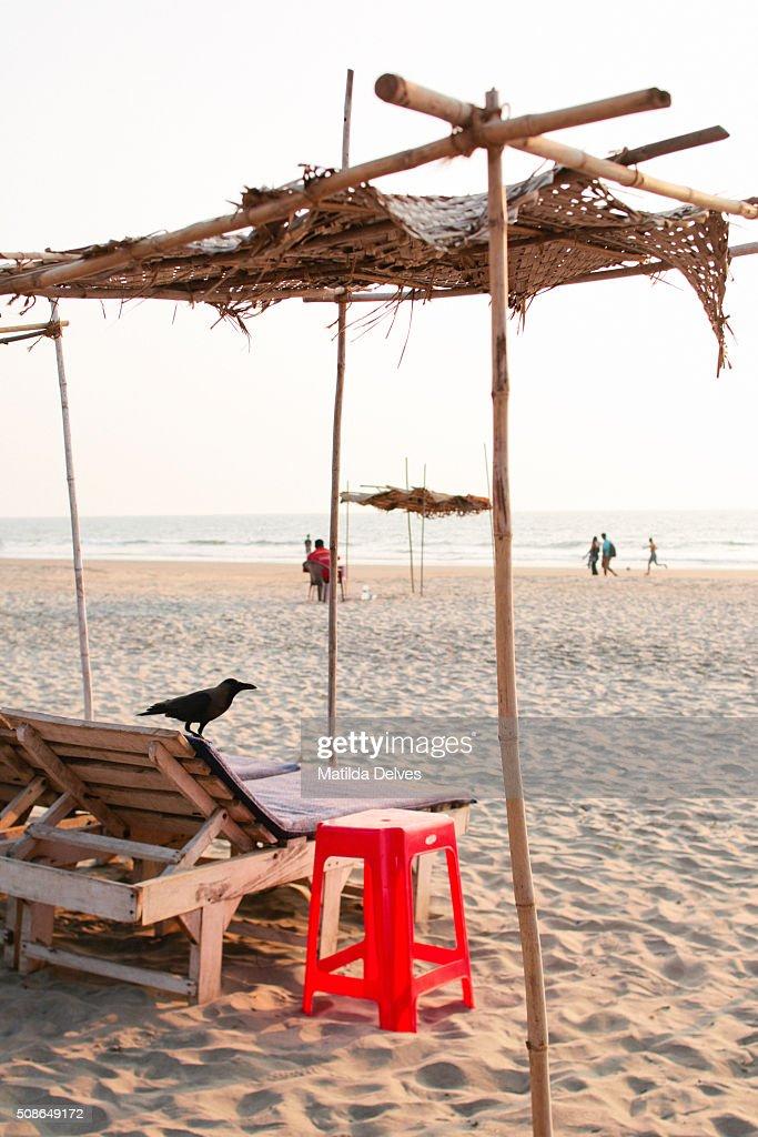 Sunshade on a beach. Goa, India : Stock Photo