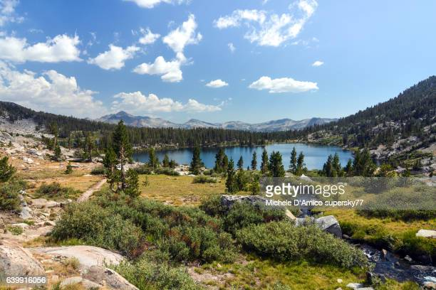 sunshine above lakes surrounded by subalpine coniferous forests - john muir trail stock photos and pictures