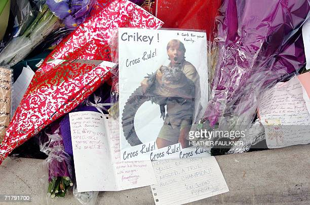 Sunshine Coast, AUSTRALIA: Thousands of tributes and flowers from friends and admirers outside Australia Zoo, 06 September 2006, following the death...