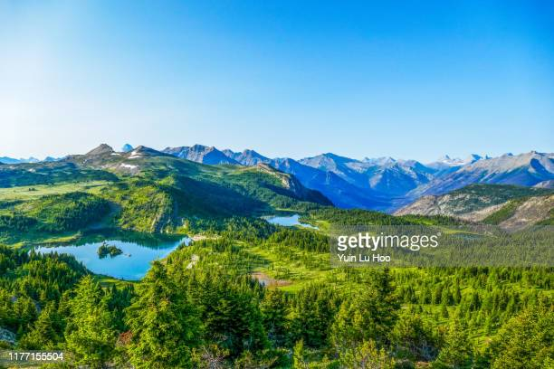 sunshine meadows vista, banff national park, canada - canadian rockies stock pictures, royalty-free photos & images