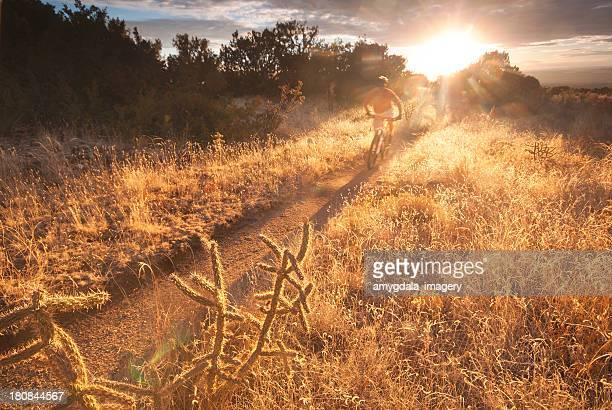 sunshine mountain biking motion - sonoran desert stock pictures, royalty-free photos & images