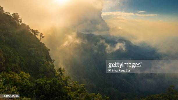 sunshine on the mountain - regenwald stock-fotos und bilder