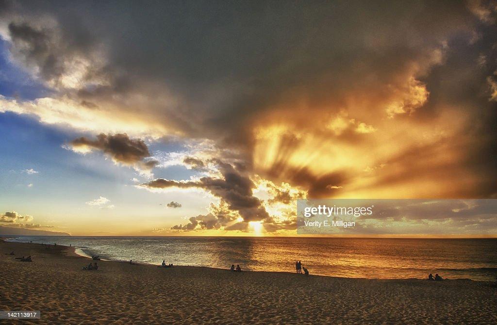Sunshine over sea : Stock Photo