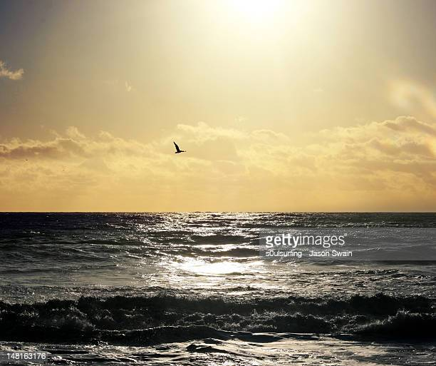 sunshine - s0ulsurfing - fotografias e filmes do acervo