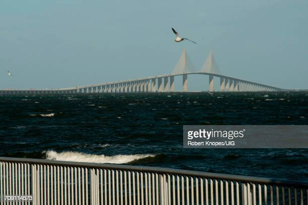 sunshine skyway bridge between bradenton and st. petersburg, florida - sunshine skyway bridge stock photos and pictures