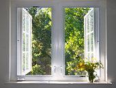 sunsplashed window