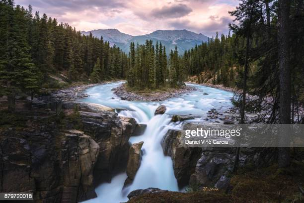 sunwapta falls, jasper national park, alberta, canada - flowing water stock pictures, royalty-free photos & images