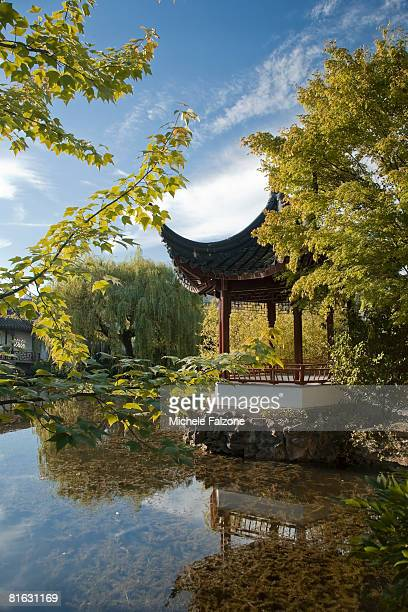 sun-yat-sen park and gardens, chinatown, vancouver, british columbia, canada - chinatown stock pictures, royalty-free photos & images