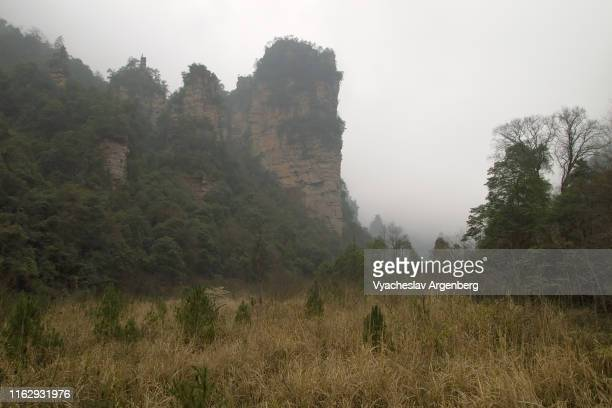 suoxi valley, wulingyuan scenic area, hunan, china - argenberg stock pictures, royalty-free photos & images