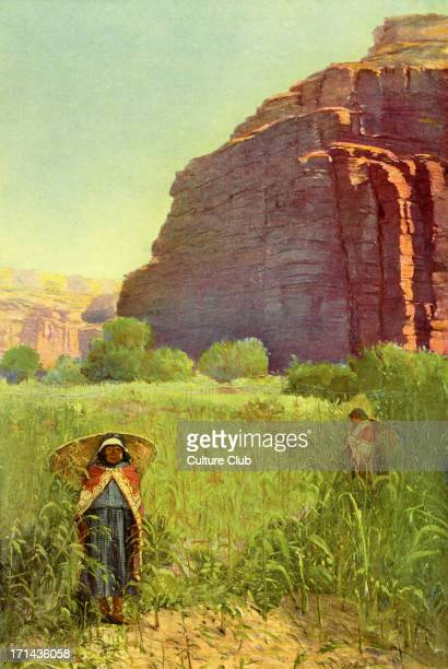 A Supai Cornfield Cataract Canyon Arizona A Native American woman of the Supai tribe stands in a cornfield with a basket on her back Early 20th...
