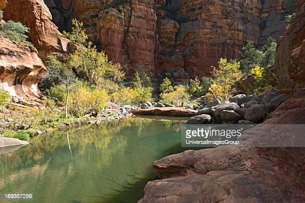 Supai sandstone pool in Wood's canyon in northern Arizona
