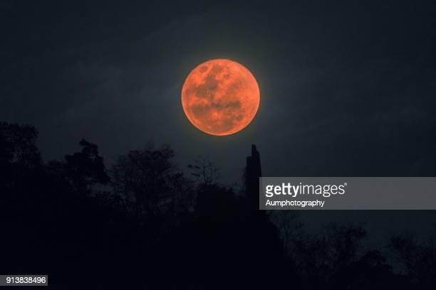 super blood blue moon - total lunar eclipse stock photos and pictures