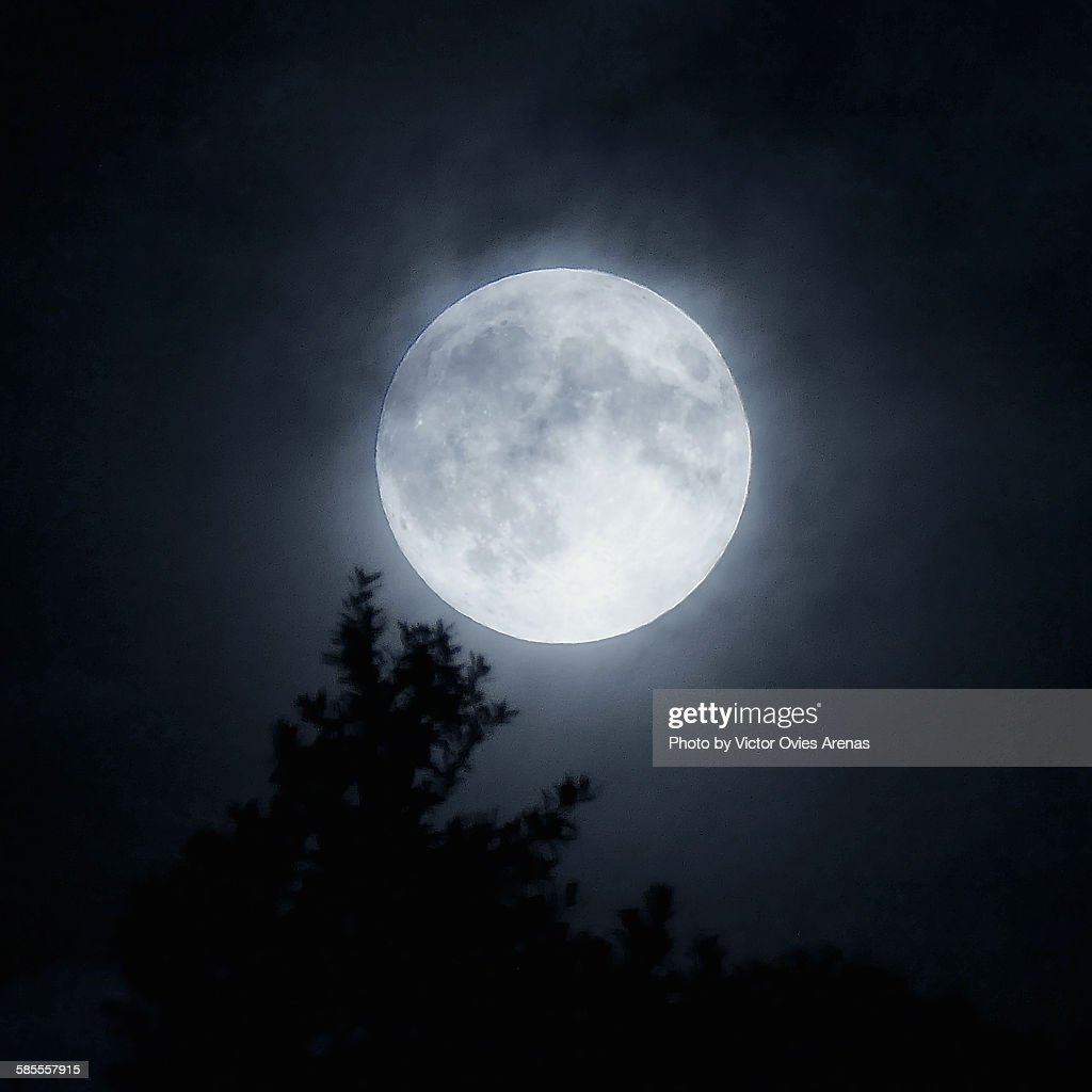 Super full moon : Foto de stock