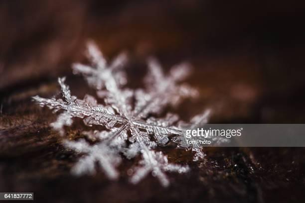 Super macro shot of snowflake