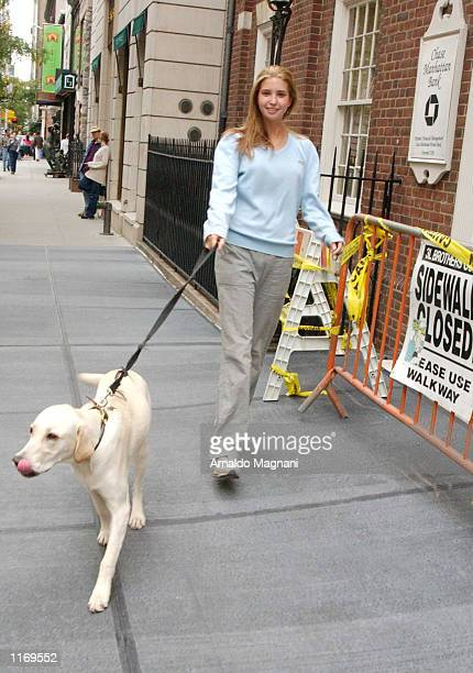 Super model Ivanka Trump walking her dog Tyler on Madison Avenue October 14 2001 in New York City